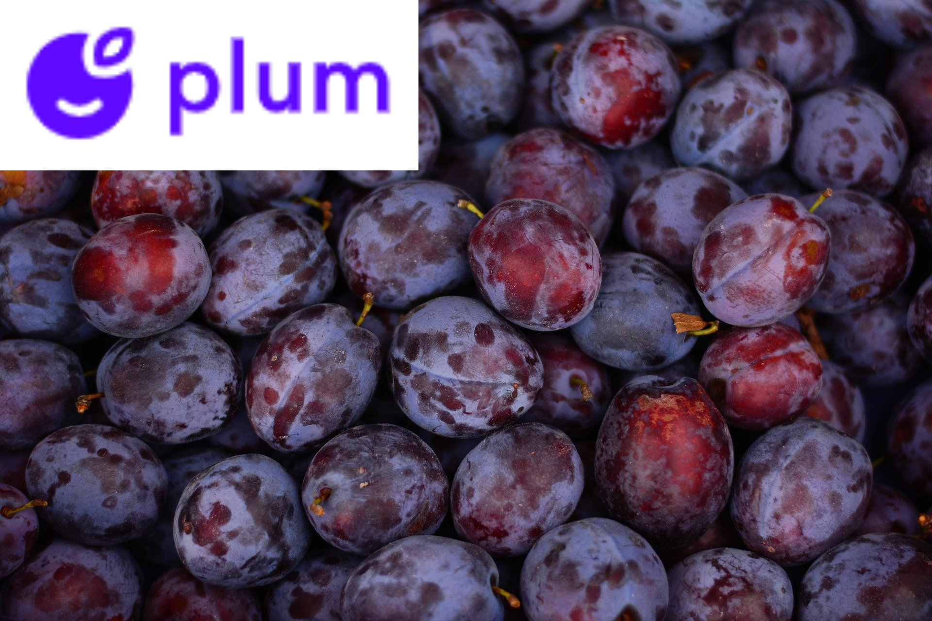 Plum review: automated savings taken from your bank account